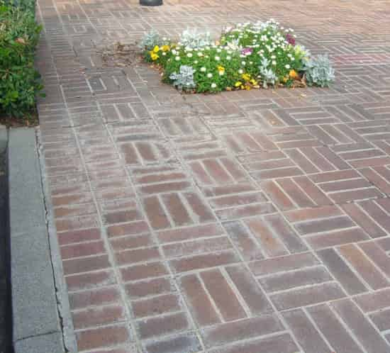 Old sidewalk with flowers